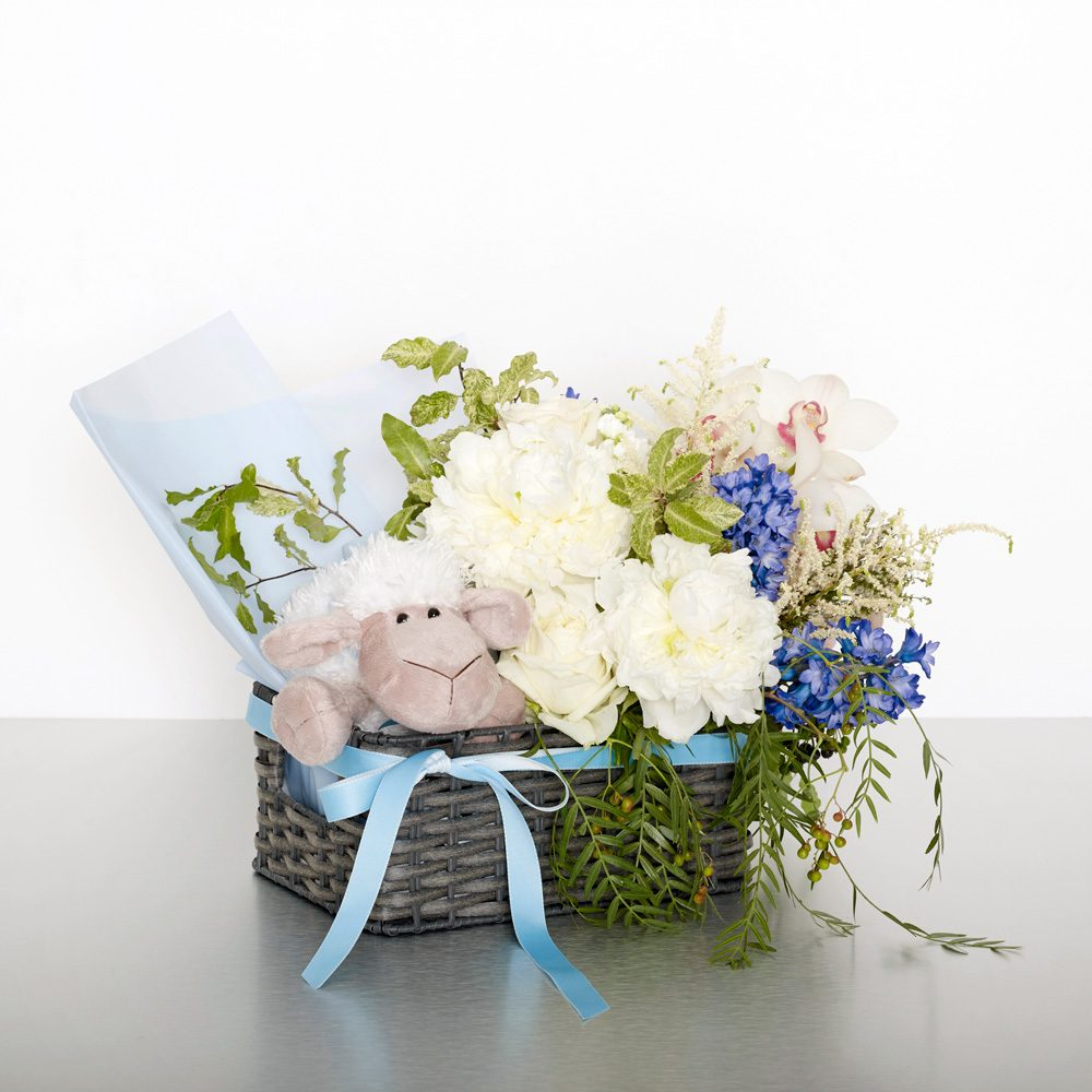 Congratulate caregivers with a gorgeous palette of blue florals. For added joy this arrangement includes a cuddly teddy and bright balloons. Image shows the small size, arranged in a basket 35cmW x 35cmH