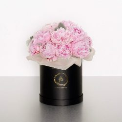 The thick, ruffled, lush bloom of the peony flower makes it a favourite of many flower lovers. Traditionally a gift of honour, romance or apology, the peony is used today for all occasions.Designed into our signature cylinder box, these lush pink peonies are sure to impress! Image shows a medium size boxed arrangement 30w x 45H
